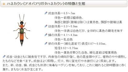 2013y07m30d_102624593.jpg